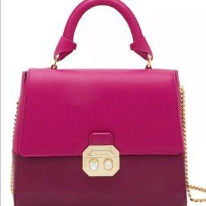 Ted Baker Shirley Crystal Pearl Lock Lady Bag